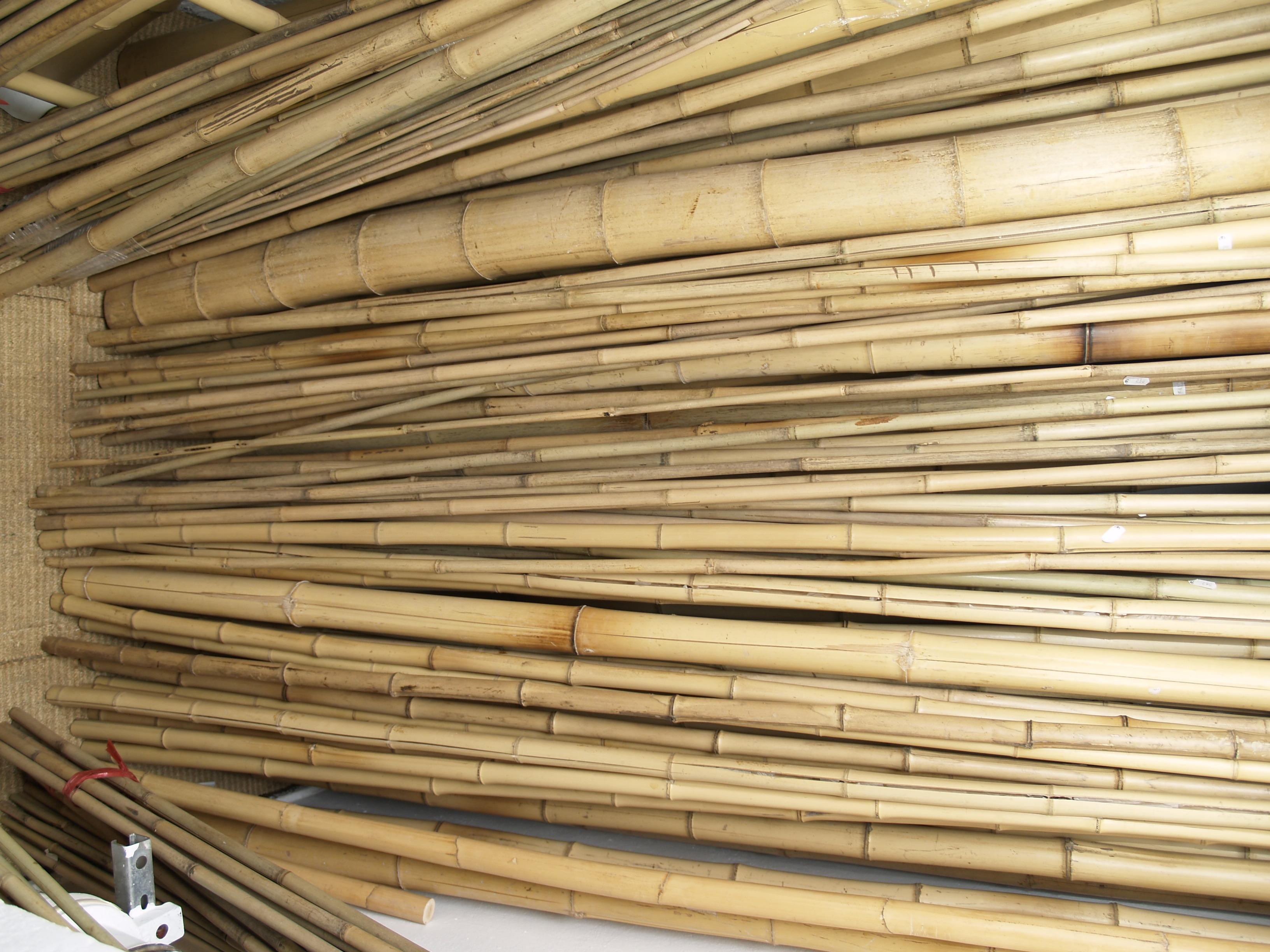 bambusrohre in allen formen und st rken in berlin. Black Bedroom Furniture Sets. Home Design Ideas