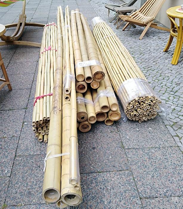 Bambusrohre frisch eingetroffen
